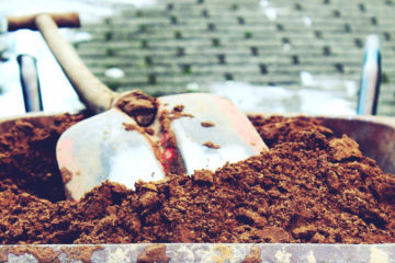 Organic treatment: the types of manure