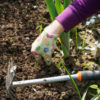 How To Mulch in a Permaculture Garden